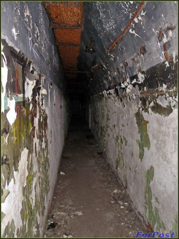 Ширина погреба 5м, длина - 40
