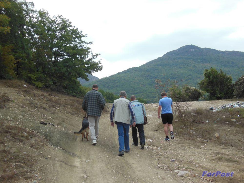 Дорожные новости из саратовской области