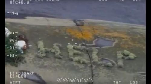 ForPost - Россиянина, пытавшегося доплыть из Швеции в Испанию, нашли на острове