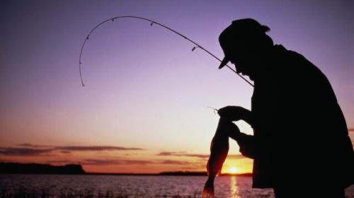ForPost - Сегодня День рыбака