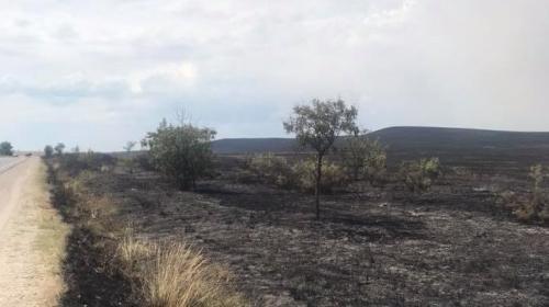 ForPost - Названы регионы Крыма из зоны риска пожаров