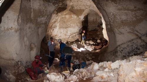 ForPost - В Крыму вскрыли уникальную пещеру с останками древних животных