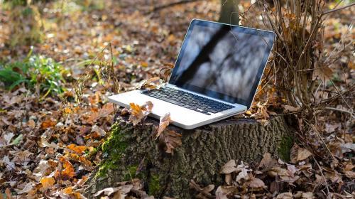 ForPost- Сельским жителям Севастополя почти недоступны интернет и мобильная связь