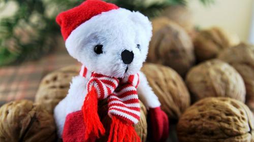 ForPost- В Крыму каждый может стать Дедом Морозом для «особых» детей