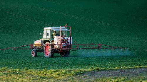 ForPost- Власти Севастополя отказались от идеи узаконить пестициды