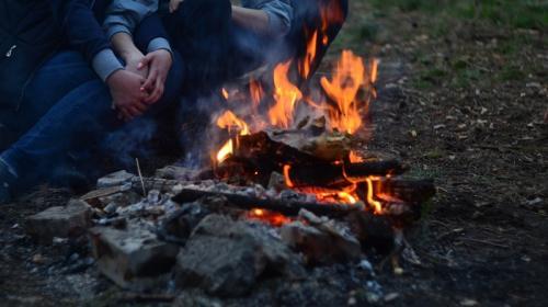 ForPost- Штраф или тюрьма: в Крыму запретили выезды в лес