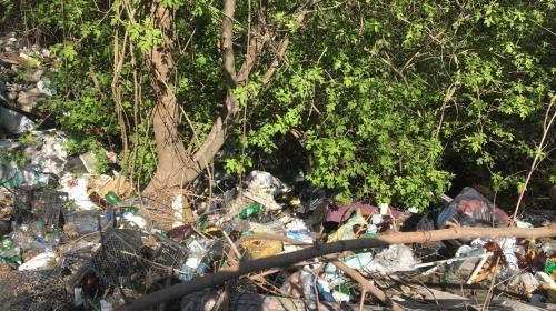 ForPost - Килен-балку в Севастополе превращают в мусорную свалку