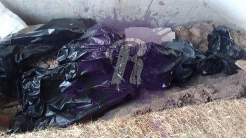 ForPost - «Коммунарка» потеряла мешки для трупов с кровью умерших от ковида