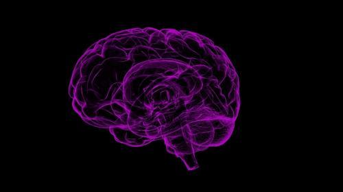 ForPost - В США мужчина заразился пожирающей мозг амебой