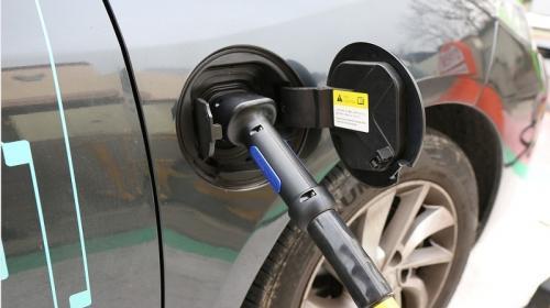 ForPost - В Севастополе три автомобиля освободили от налога на три года