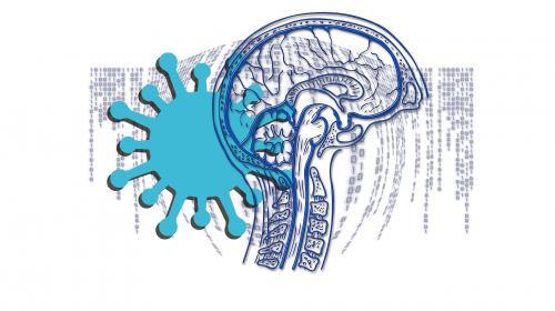 ForPost - Британские учёные предупредили об опасности коронавируса для мозга