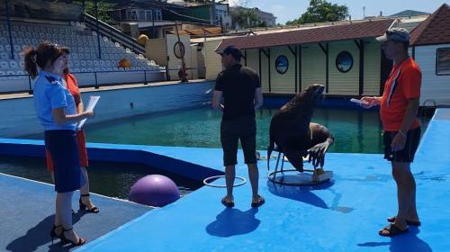 ForPost - Прокуратура требует закрытия дельфинария в Артбухте