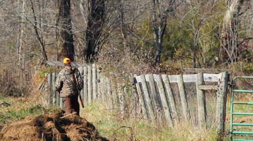 ForPost - Подстрелили и бросили умирать: пожилой крымчанин не может наказать обидчиков