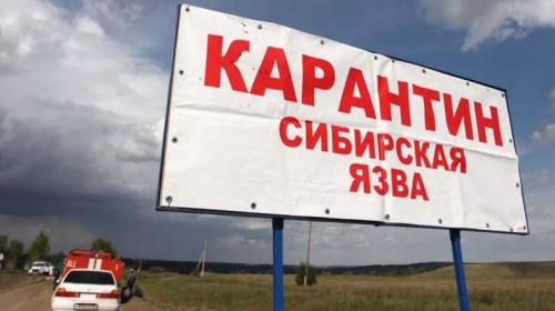 ForPost- На юге Украины подтвердили случай сибирской язвы