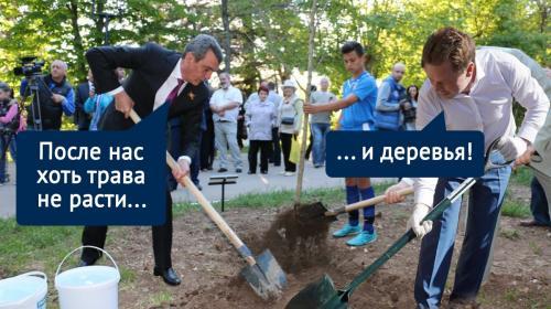 ForPost- Стоп, снято: что стало с деревьями, посаженными звёздами и губернаторами Севастополя