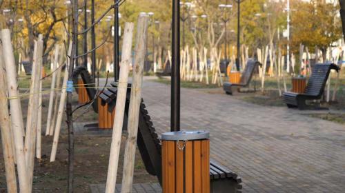 ForPost- «Лысый парк» готов удивить севастопольцев