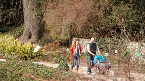 ForPost- Благоухающий январь в старейшем ботаническом саду Крыма