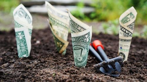 ForPost - Названы лучшие способы накопления денег в 2021 году