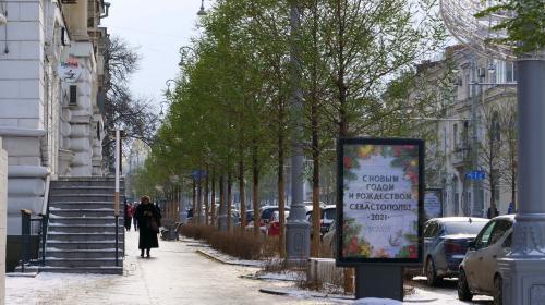 ForPost - Почему на Большой Морской в Севастополе деревья остались зелёными?