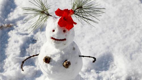 ForPost - СевСети #1158: СнегоВика, задний ход и сибирские забавы в Севастополе
