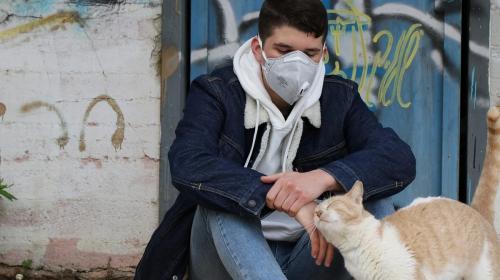 ForPost- Заболеваемость коронавирусом в Севастополе снижается