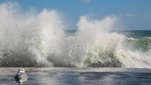 ForPost- Скоро на Крым обрушится разрушающий ветер