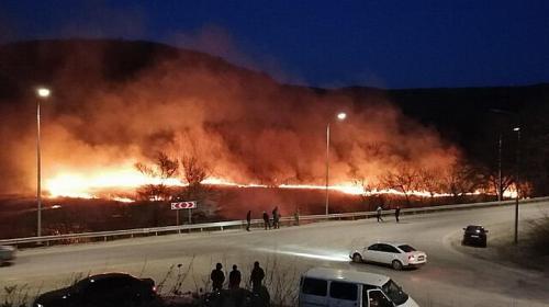 ForPost- В пожаре на крымском озере могли погибнуть перелетные птицы