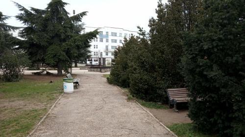 ForPost - Севастопольцы волнуются, что хиреет сквер «Каменный цветок» у «Муссона»