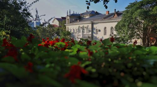 ForPost- Севастопольские школы и больницы озеленят почти на 7 миллионов