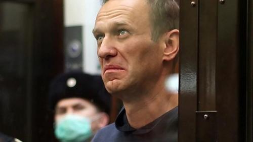 ForPost- Навальному всё-таки дали премию кинокритиков «Белый слон»