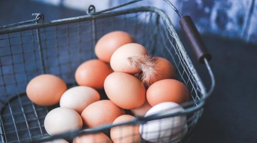 ForPost - В Хабаровске раздают яйца за вакцинацию