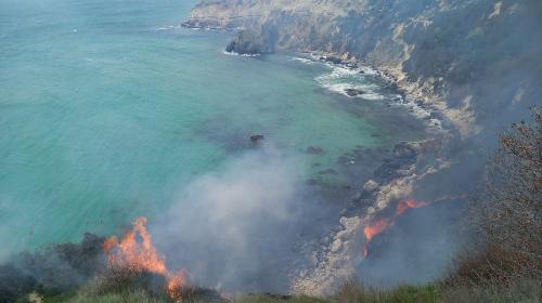 ForPost- В Севастополе горел пляж «Баунти» на Фиоленте