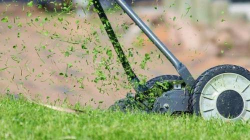 ForPost- Севастопольские чиновники и общественники косят траву
