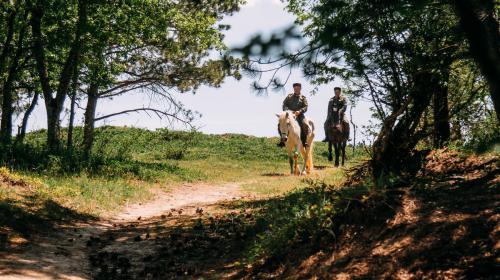 ForPost - Лесные пожары в Севастополе предотвращают казаки