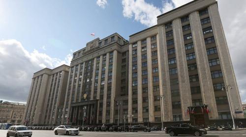 ForPost - Законопроект о запрете на услуги суррогатных матерей для иностранцев внесли в Госдуму