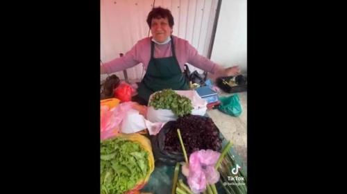 ForPost- Англоязычная тиктокерша устроила в Крыму переполох