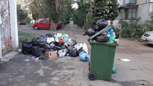 ForPost - Как прекратить мусорный беспредел в Севастополе
