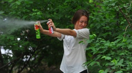 ForPost - Россиянам назвали лучшие средства от комаров и клещей