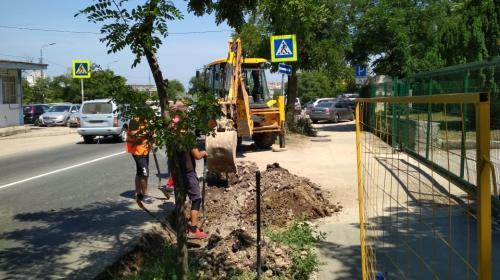 ForPost- Исторический бульвар в Севастополе вновь подвергся атаке ремонтников