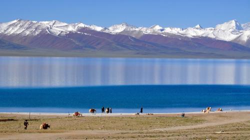 ForPost- В леднике Тибета выявлены 33 вируса возрастом 15000 лет