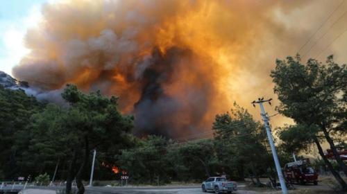 ForPost- Стало известно, кто и зачем устроил масштабные лесные пожары в Турции