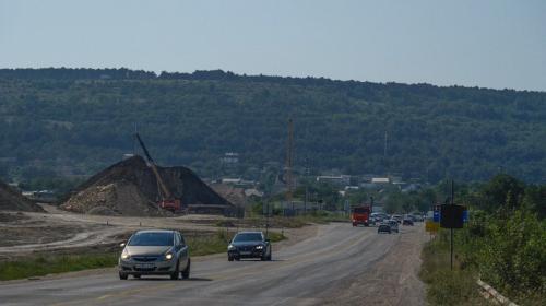 ForPost- Тысячи краснокнижных деревьев вырубят при строительстве севастопольского участка трассы «Таврида»
