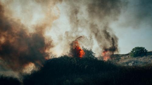 ForPost- Крупные пожары в Севастополе охватили почти 6 тысяч квадратных метров земли