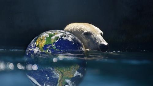 ForPost- Климатолог рассказал, когда Мировой океан затопит Землю