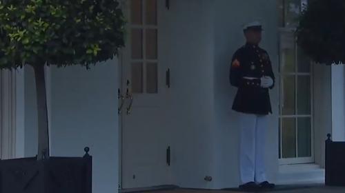 ForPost- Американский морпех перепугался грома и рассмешил Интернет. Видео