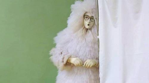 ForPost- Курица, «конь в пальто» и Пьеро в перьях: кто являлся на выборные участки в Крыму и Севастополе