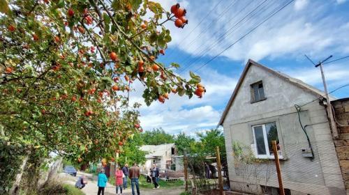ForPost - Садоводов 7 лет «футболят» с правом собственности на землю в Крыму