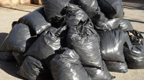 ForPost - Волонтеров Севастополя попросили заплатить за уборку города