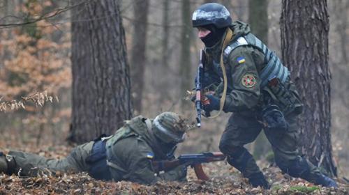 ForPost- На Украине отказываются от советского «Калашникова» в пользу винтовки «Укроп»