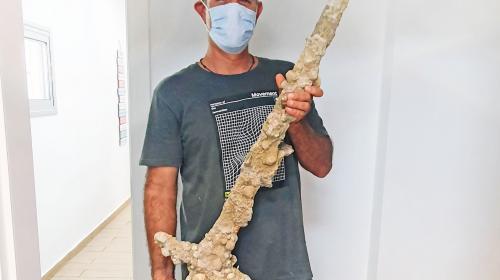 ForPost- Дайвер нашёл в море уникальный меч. Видео